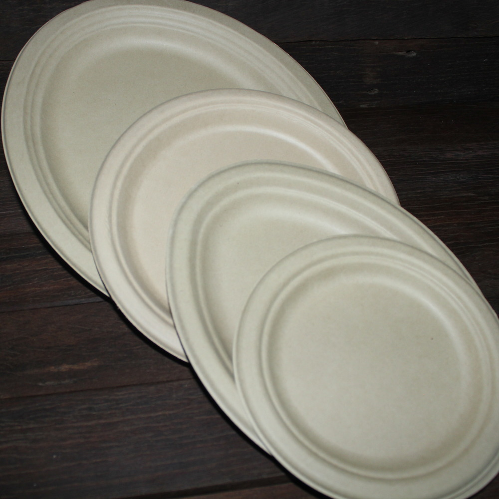 Bamboo Plates Disposable Eco Friendly Eco Party Box